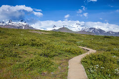 Wooden boardwalk at national park in Iceland Royalty Free Stock Image