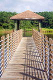 Wooden boardwalk and observation point Stock Photo