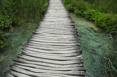 Wooden boardwalk over a brook. Wooden boardwalk over clean turquoise brook crowded with fish in Plitvice national park Royalty Free Stock Photo