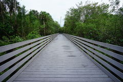 A wooden boardwalk Royalty Free Stock Photo