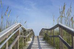Wooden Boardwalk Path to Summer Fun Stock Photography