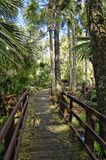 Wooden boardwalk in the recreation area in the Ocala National Forest located in Juniper Springs Florida stock photography