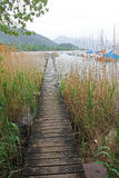 Wooden boardwalk through the reed, lake tegernsee Stock Images