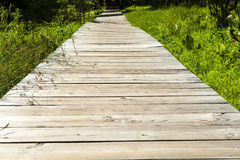 Wooden Boardwalk Royalty Free Stock Photos