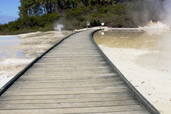 Wooden boardwalk through thermal area Royalty Free Stock Photos