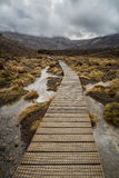Wooden boardwalk in Tongariro national park. New Zealand Royalty Free Stock Image