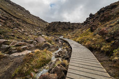 Wooden boardwalk in Tongariro national park Royalty Free Stock Photos