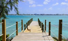 Wooden Boardwalk in Tropical Setting Stock Photo