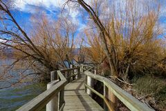 Wooden boardwalk on waters edge Stock Photo