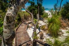 Wooden boardwalk in whitehaven beach in Australia stock photography