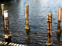 Wooden Boat Dock Pole Bumpers. Wooden boat dock pole bumper, five wooden pole bumpers for boat anchoring Stock Images
