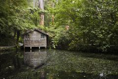 Wooden boat house. In dense forest with lake in foreground Royalty Free Stock Image
