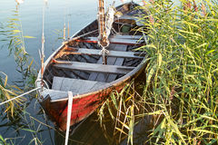 Wooden boat in the reeds Stock Photos