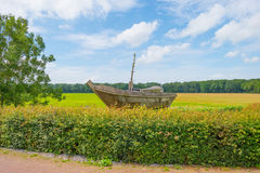 Wooden boat sailing on a former sea. A former sea in summer royalty free stock images