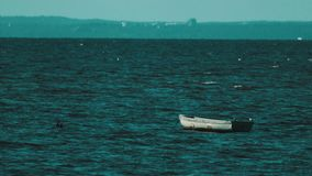 Wooden boat shaking on waves in middle of lake. Segulls flying over, sunny summer windy day stock video
