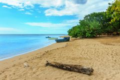 Wooden boats on the sandy beach with green plants and log. Wooden boats on the beach with green plants and log, fishermen`s point Royalty Free Stock Photos