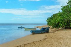 Wooden boats on the beach with green plants. Fishermen`s point Stock Photos