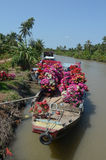 Wooden boats carrying flowers to the market in Ben Tre, Vietnam Royalty Free Stock Images