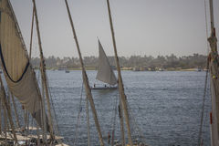 Wooden boats felucca at the Nile River in Aswan, Egypt, North Af Stock Photography