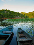 Wooden boats. Old wooden boats at Skadar lake, Montenegro Royalty Free Stock Photography