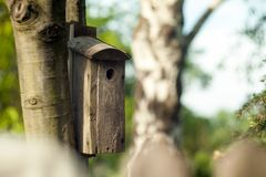 Wooden booth for birds on the tree. A bird house on the bruch. Wooden booth for birds on the tree. A bird house on a natural background royalty free stock photo