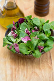 Wooden bowl with corn salad leaves and radicchio royalty free stock photos