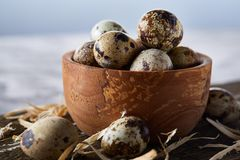 Wooden bowl filled with quail eggs on wooden board over white background, close-up, selective focus. Wooden bowl filled with fresh quail eggs and some hay on Royalty Free Stock Image