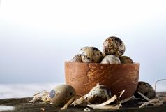 Wooden bowl filled with quail eggs on wooden board over white background, close-up, selective focus. Wooden bowl filled with fresh quail eggs and some hay on Royalty Free Stock Photography