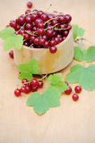Wooden bowl with fresh red currants Stock Photos