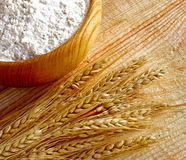 Wooden bowl full flour and wheat ears Stock Image