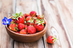 Wooden bowl full of fresh strawberries on thewooden background. Wooden bowl full of fresh strawberries on the wooden background with blue flower selective focus Stock Photography