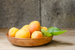 Wooden bowl full of ripe apricots. Stock Photography