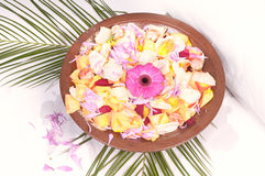 Wooden bowl with petals Royalty Free Stock Photography