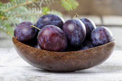 Wooden bowl of plums Stock Photos