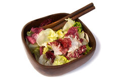 Wooden bowl of Salad leaves Stock Image