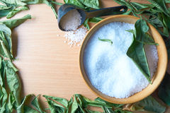 Wooden bowl of sea salt Royalty Free Stock Image