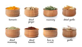 Wooden bowls with different spices and herbs. On white background. Large collection with names royalty free stock image