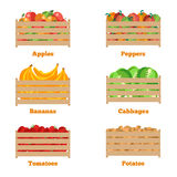 Wooden box with autumn fruits and vegetables Stock Images