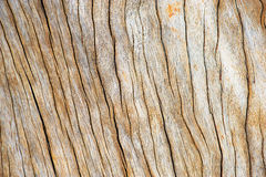 Wooden box backgrounds/texture s Stock Photos
