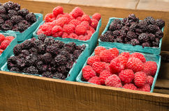 Wooden box with baskets of berries. A wooden box with baskets of red raspberries and black raspberries Royalty Free Stock Photos