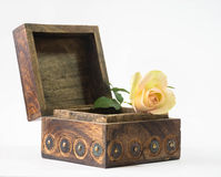 Wooden box with beautiful rose Royalty Free Stock Photos