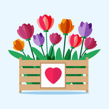 Wooden box with colored tulips. Vector illustration of the spring and summer flowers in flat style. The background of plants. Greeting Card Template Royalty Free Stock Photography