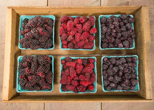 Wooden box of fresh berries Royalty Free Stock Image