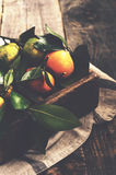 Wooden box with fresh green, yellow and orange tangerines Stock Photo