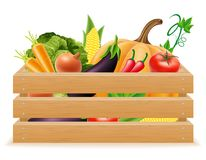 Wooden box with fresh and healthy vegetables vector illustration Stock Image