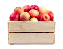 Wooden box full of fresh apples isolated Royalty Free Stock Photography