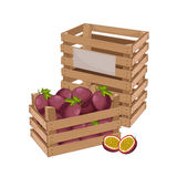 Wooden box full of passion fruit  vector Stock Photography