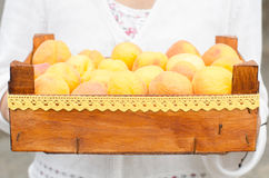 Wooden box full of ripe apricots. Stock Image