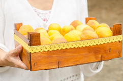 Wooden box full of ripe apricots. Royalty Free Stock Images