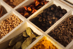 Wooden box full of spices. Closeup of a wooden box with sections full of colorful spices. Focus is on pepper and cardamom. Dark wooden background stock photo